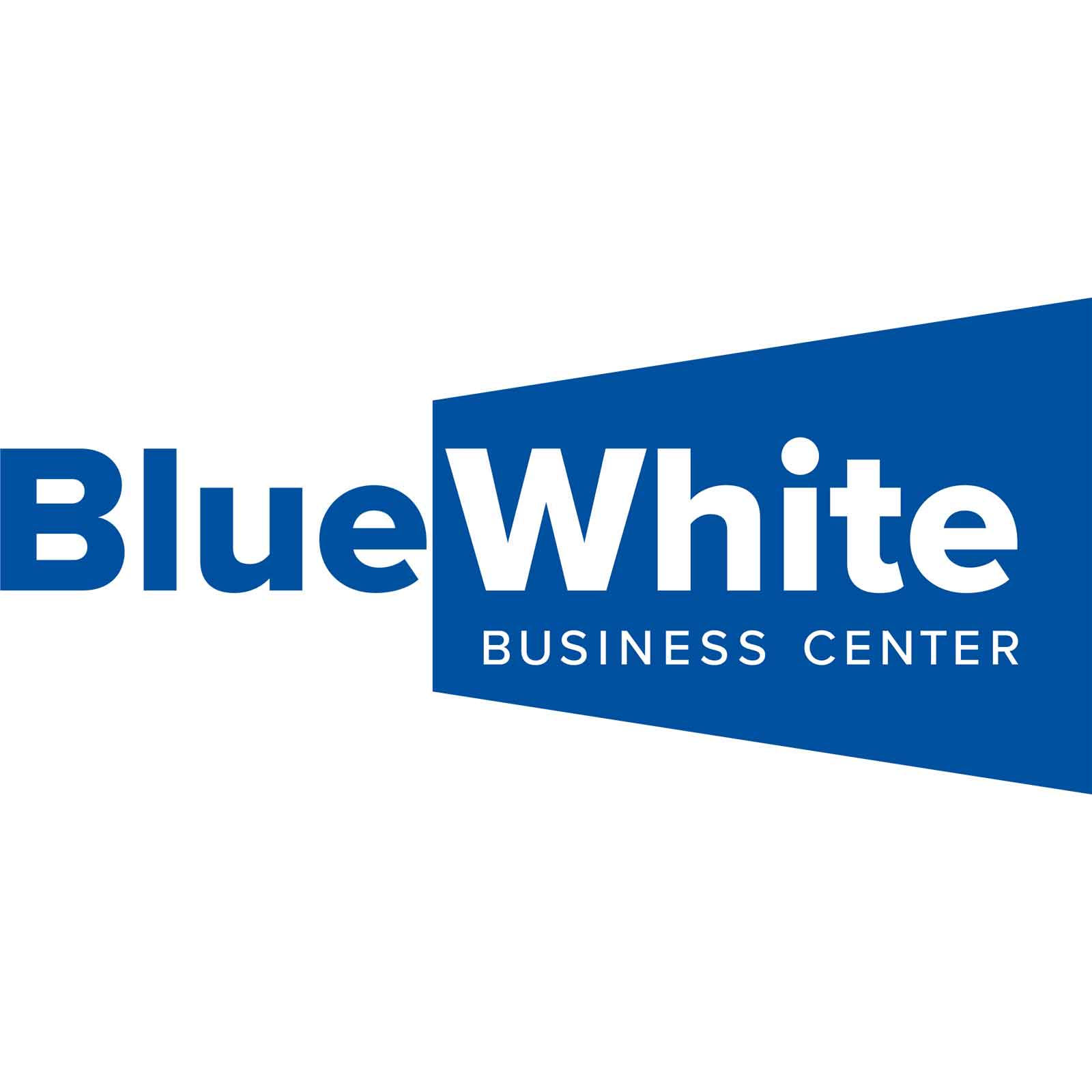 BlueWhite Business Center Logo ShowMyProject Basel